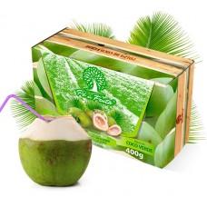 Polpa Pé de Fruta Coco Verde 400g