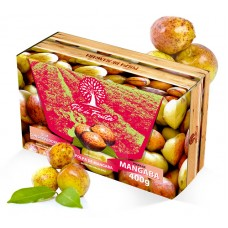 Polpa Pé de Fruta Mangaba 400g