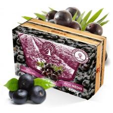 Polpa Pé de Fruta Açai Medio 400g