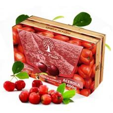 Polpa Pé de Fruta Acerola 400g