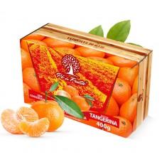 Polpa Pé de Fruta Tangerina 400g