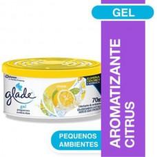 Odorizador De Ambientes Em Gel Citrus 70g